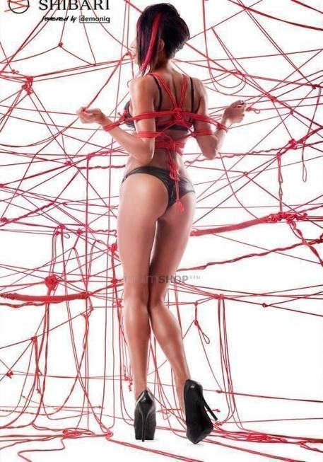 Комплект из матовой кожи Shibari Asami с веревками для связывания, S