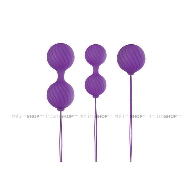 Набор вагинальных шариков Luxe - O - Weighted Kegel Balls, фиолетовый - NS Novelties