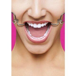 Кляп Hook Pink Shotsmedia